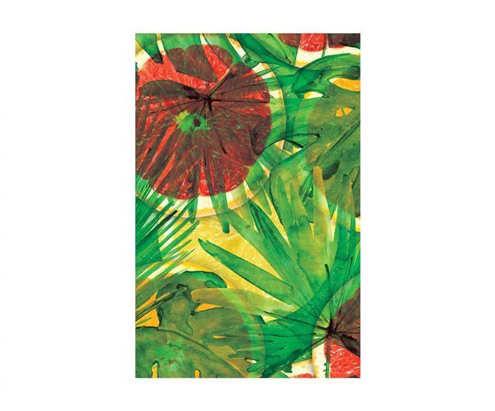 tela canvas citric (montado) 0504G tela canvas citric